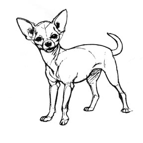 Chihuahua crafts for Chihuahua coloring pages