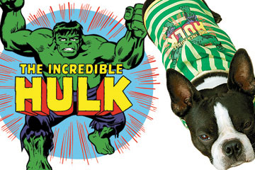 hulk-header.jpg